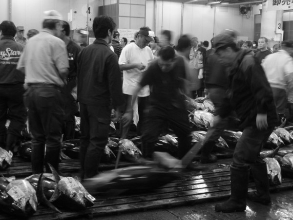 Tokyo's Tsukiji Fish Market is one of the craziest things I've ever seen. Watching the tuna auctions is great fun.
