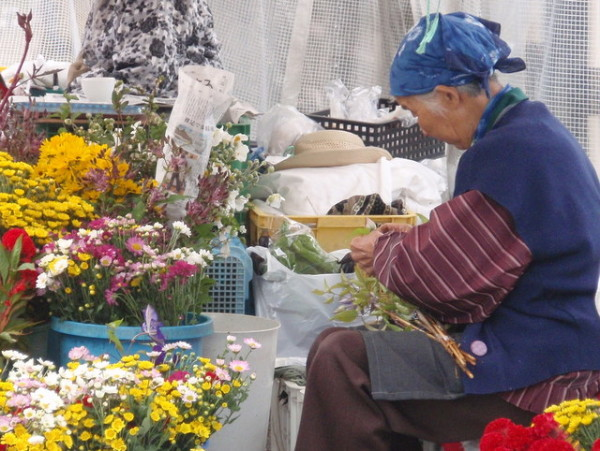 An elderly woman cuts flowers at a street market along the river in Takayama, Japan