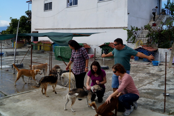 With my hosts Shira and Assaf in Vlore, Albania. They took me to the dog shelter they volunteer at.