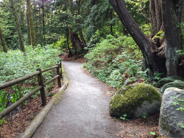 Stanley Park Trails