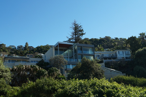 Houses at Whale Beach