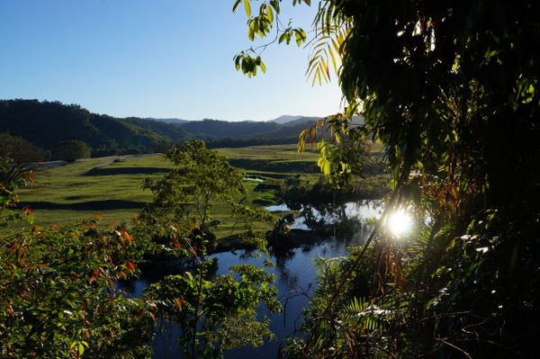 The Daintree River is an interesting place - one minute you're walking on a gravel road passing cattle and horses, the next you're collecting coconuts and watching for crocodiles.