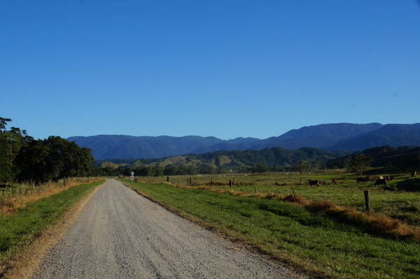 Road along Daintree River