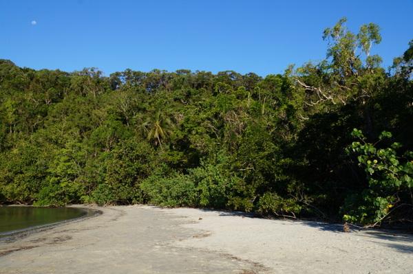 South end of Cape Tribulation Beach