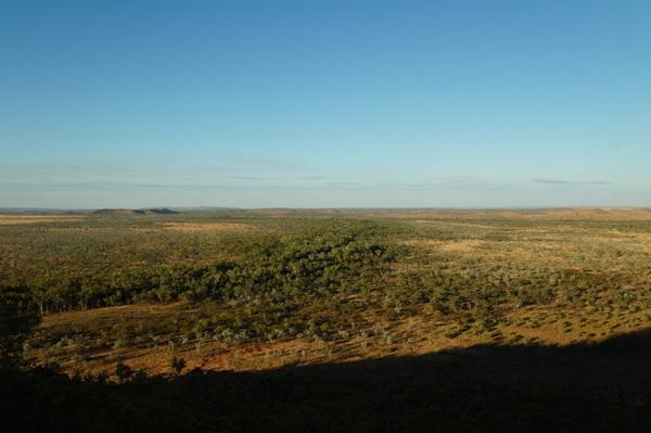 Lawn Hill Creek cutting through the plain