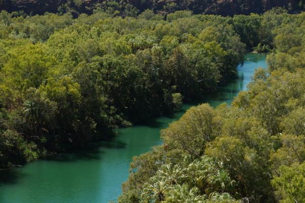 Lawn Hill Creek