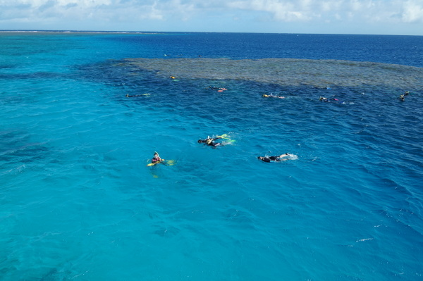 Snorkelers in the water