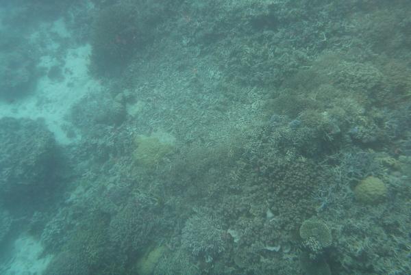 Underwater unedited