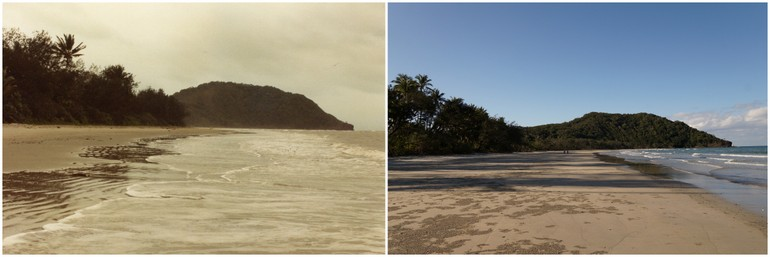 Cape Tribulation 1982 2014