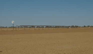 Birdsville Feature