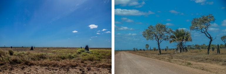 Nifold Plain landscape-1