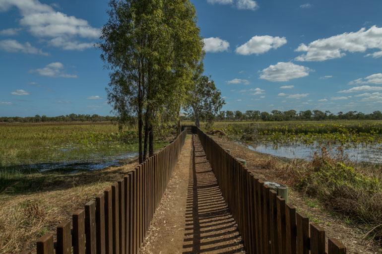 Red Lily Lagoon platform - Rinyirru National Park