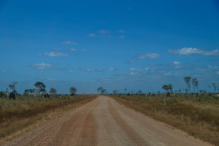 Road on Nifold Plain - Rinyirru National Park