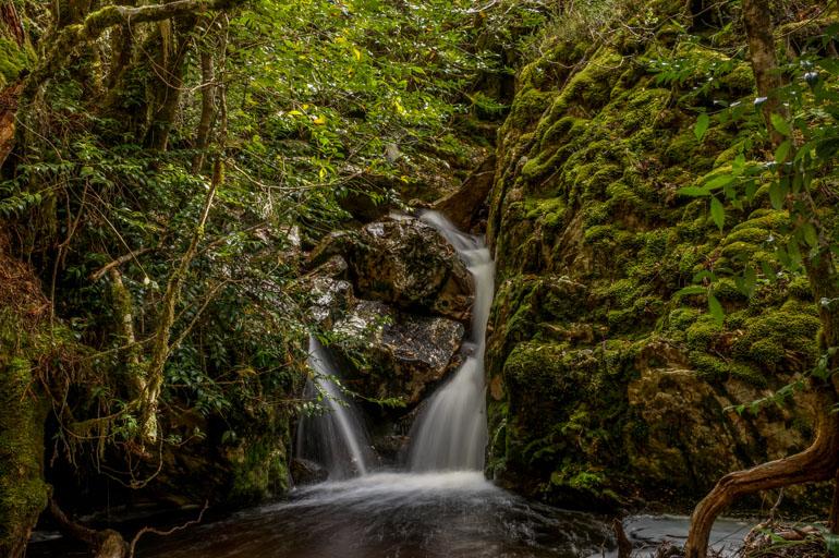 Crater Falls, Cradle Mountain