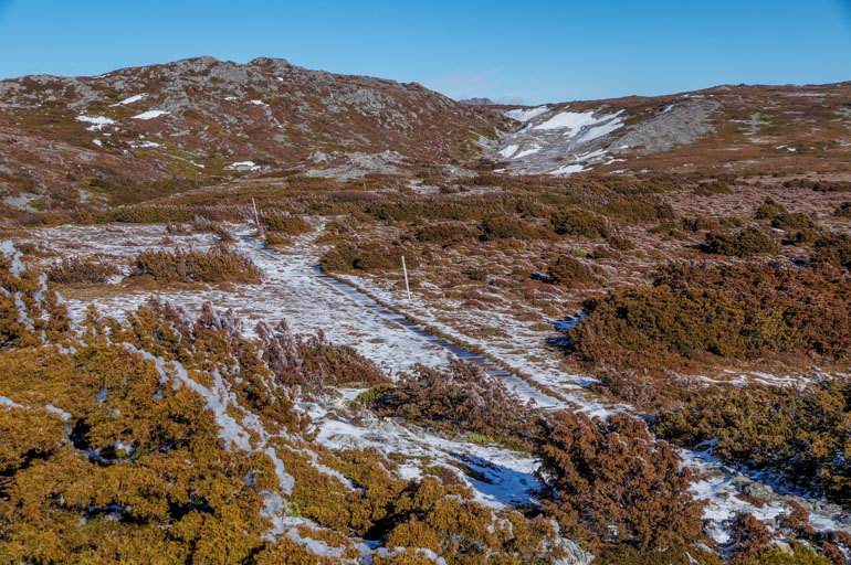 Horse Track from Crater Peak, Cradle Mountain