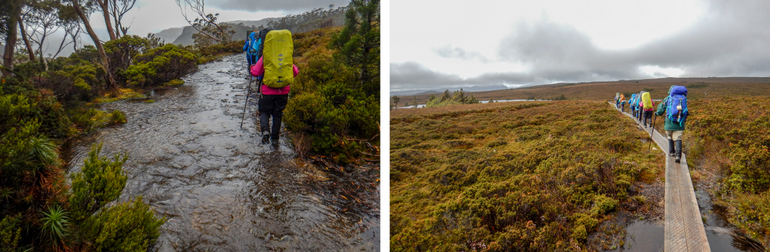 Leaving Waterfall Valley, on the Overland Track