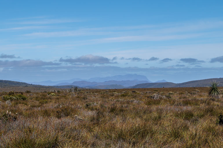 Looking south on the Overland Track