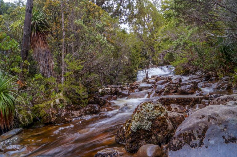 River - Overland Track
