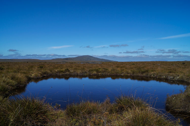 Tarn on the plateau, Overland Track