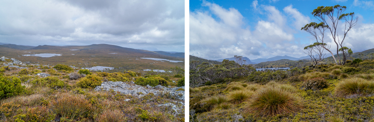 Views on Day 2 of the Overland Track